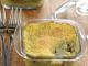 leicht-rezept-fischauflauf-kochen-essen-gesund-ernähren-min